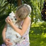 Things you need to know before deciding to adopt a deaf dog